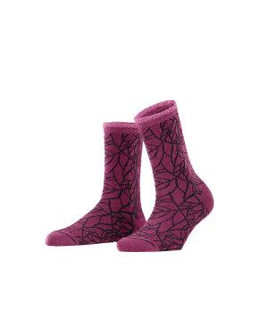 Falke - Wonderland Sock